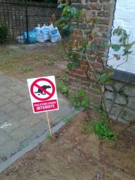 'Dog pollution forbidden'. (home-made sign)